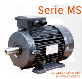Serie-MS